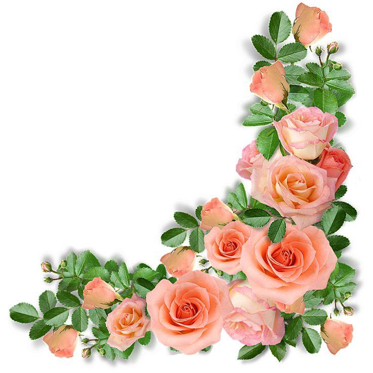 62 best borders images on pinterest flowers clip art and red roses videosyperkolaeva mightylinksfo