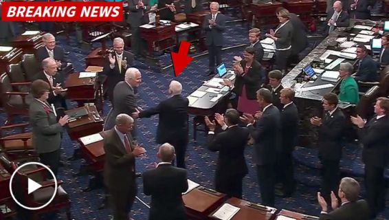 After Brain Cancer Diagnosis, Senator John McCain Gets Standing Ovation From Colleagues