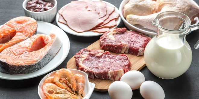 High Protein Foods for Growth of Children