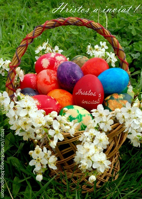 Coloured Easter eggs  http://cantboilanegg.blogspot.com/2012/04/hristos-inviat.html