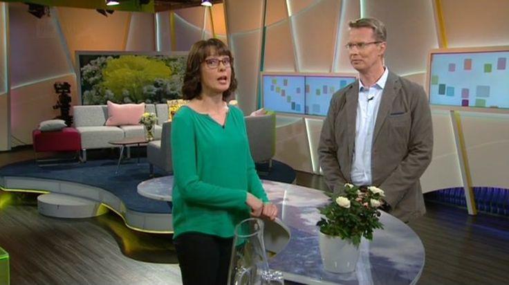 16.5.2016 Ylen aamu-tv:ssä Professori Ville Valtonen kertoo sisäilmaongelmien vaikutuksesta terveyteen.