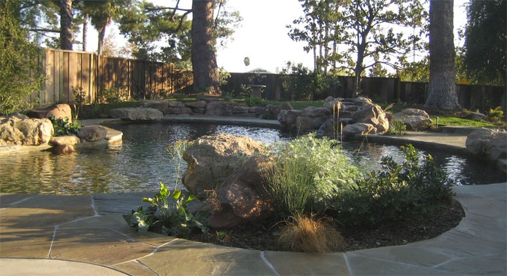 27 best images about swimming pools on pinterest for Terry pool design jewelry