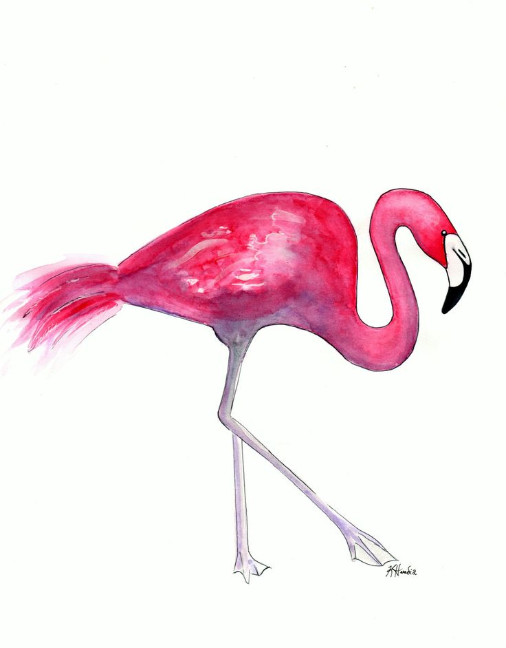 """Pink Flamingo Two - Prints - 8""""x10"""" - Various Sizes - Wall Art - Nature Art - Stand Tall - Stand Out - Pink Feathers by KristinaHerediaArt on Etsy"""
