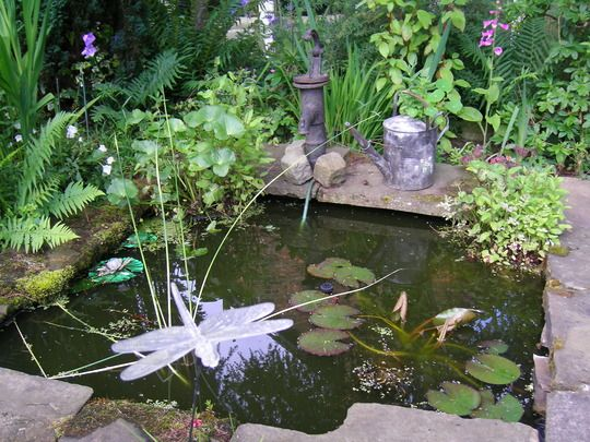 17 best images about ruby gloom pics on pinterest for Garden pond tub