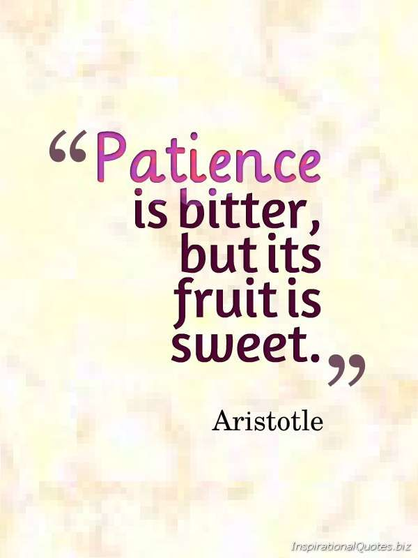 "How true! -- ""Patience is bitter, but its fruit is sweet."" Inspirational Quote by Aristotle."