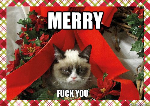 merry christmas grumpy cat
