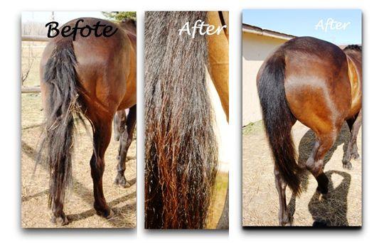 Mtg Natural Hair Growth