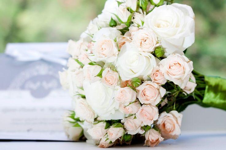 Rózsa és minirózsa