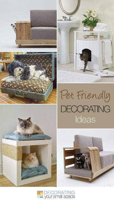 Pet Friendly Decorating • Ideas & tutorials!: