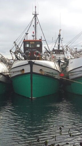 Gansbaai fishing trawlers