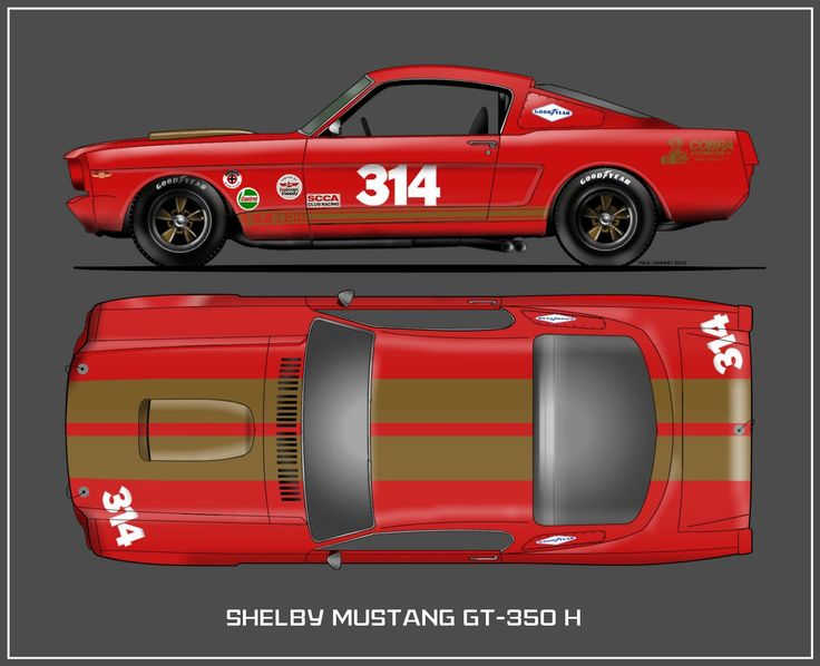 51 best allan mann 39 s team tour de france mustangs 1964 images on pinterest mustang mustangs. Black Bedroom Furniture Sets. Home Design Ideas