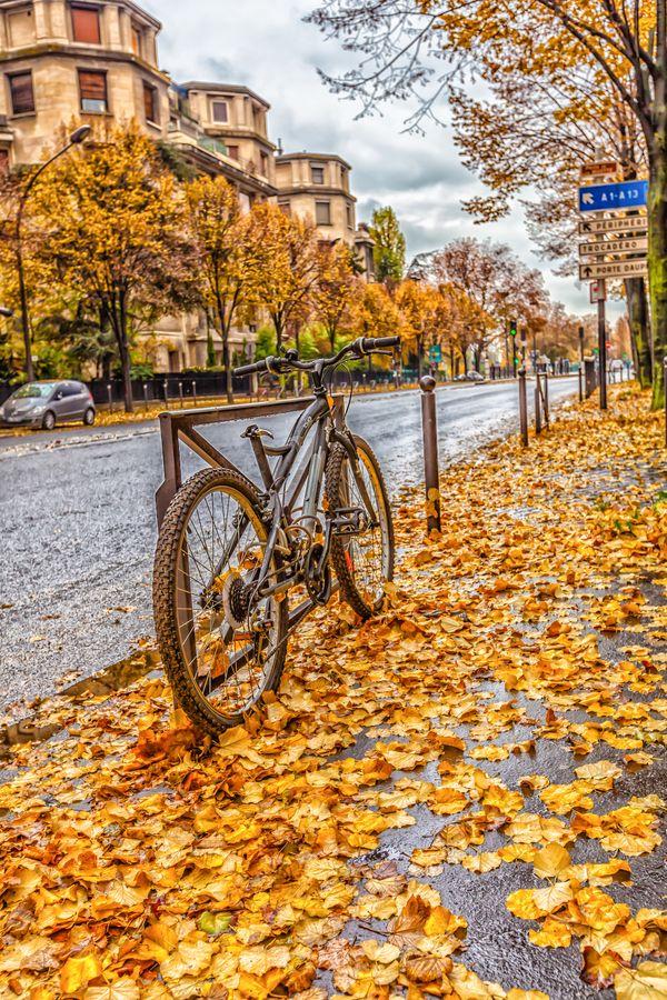 Paris in autumn season