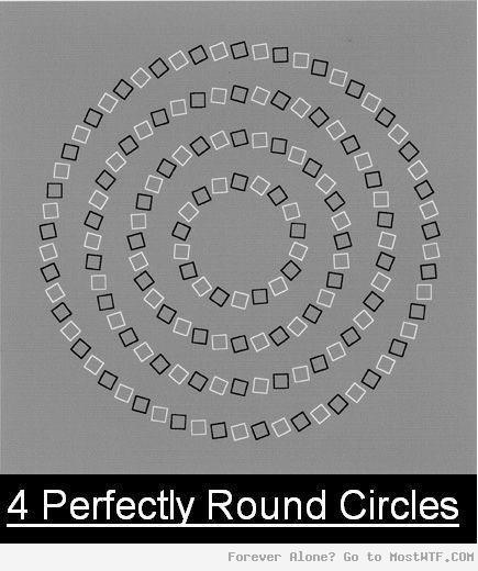 4 Perfect Round Circles