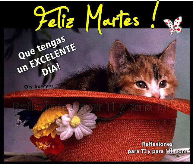 Buenos Deseos para TI y para MÍ: * FELIZ MARTES !!! Que tengas un EXCELENTE DÍA !