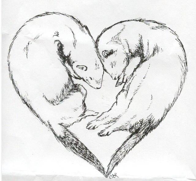 Ferret tattoo idea