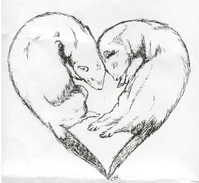 Ferret tattoo idea