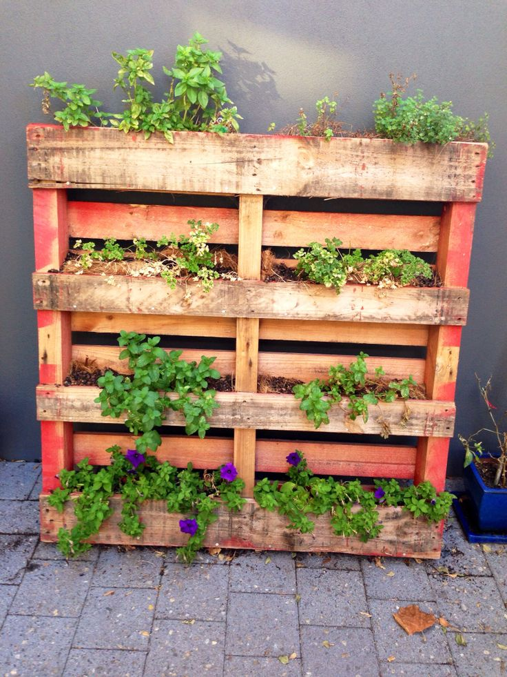 Diy vertical pallet herb garden gardening ideas for Pallet veggie garden