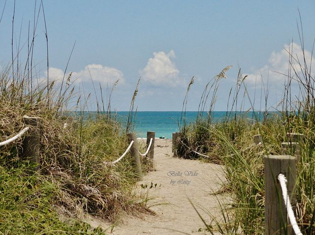 Hutchinson Island Ft Pierce Florida
