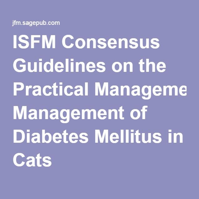 ISFM Consensus Guidelines on the Practical Management of Diabetes Mellitus in Cats