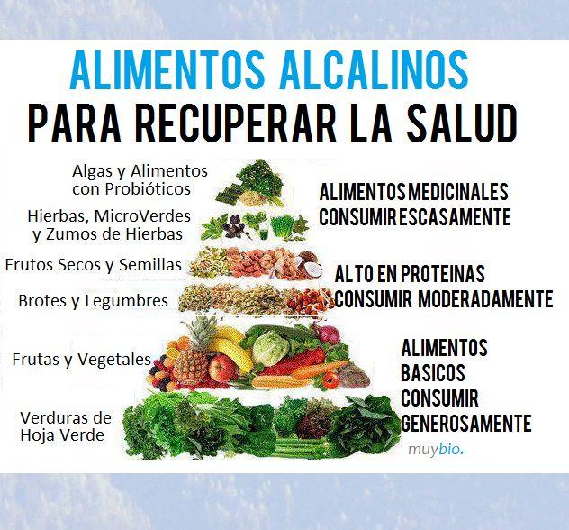 Alimentos Alcalinos y sus beneficios                                                                                                                                                                                 Más
