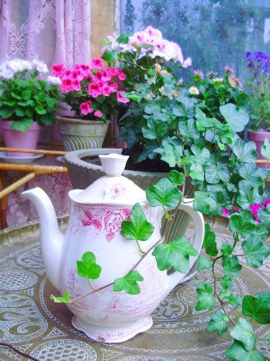 http://romulyylinpuutarha.blogspot.fi/