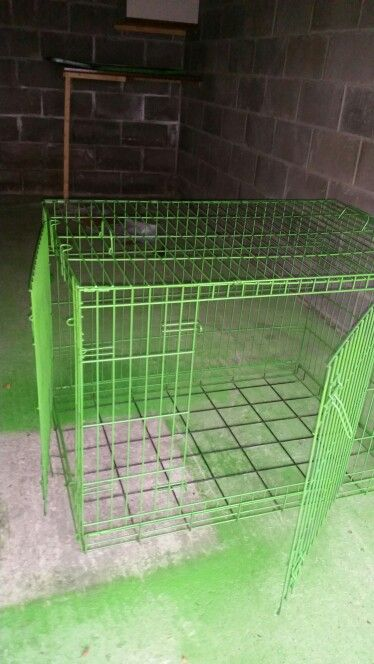 Jazz up a dog crate. Plastikote spray paint is a great product to use to put some life back into old, worn pet cages. I acquired this crate for £10, it was rusty and very used. Sanded it down and sprayed. Going to add lino to the bottom tray and will be a fantastic base for my bunnies room!