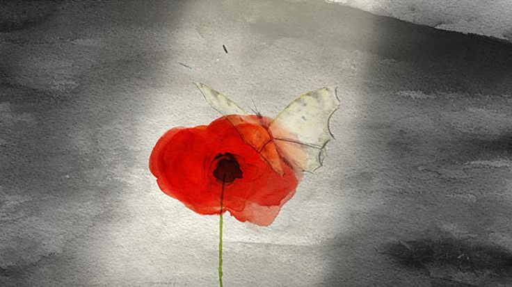 Remembrance Animation for Kids