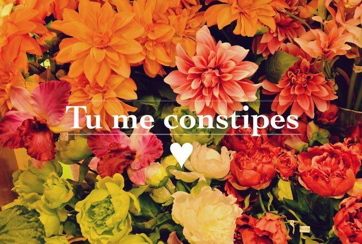 Dites-le avec des fleurs ... LOL !