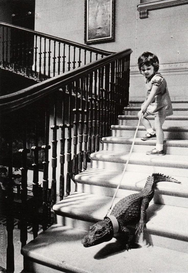 WALKING MY ALLIGATOR, C.1960S