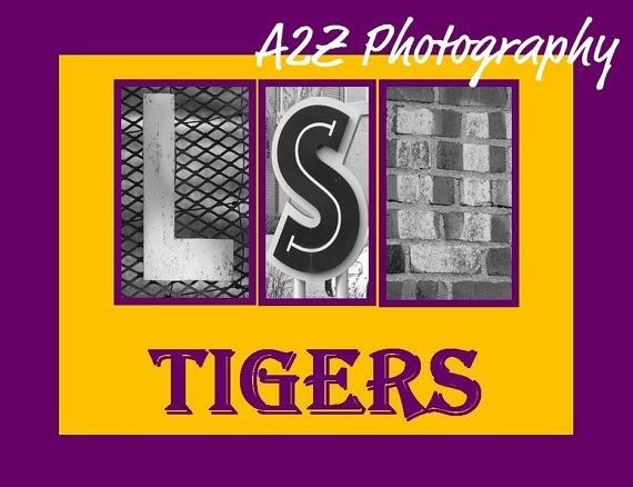 370 best LSU stuff images on Pinterest Louisiana Lsu
