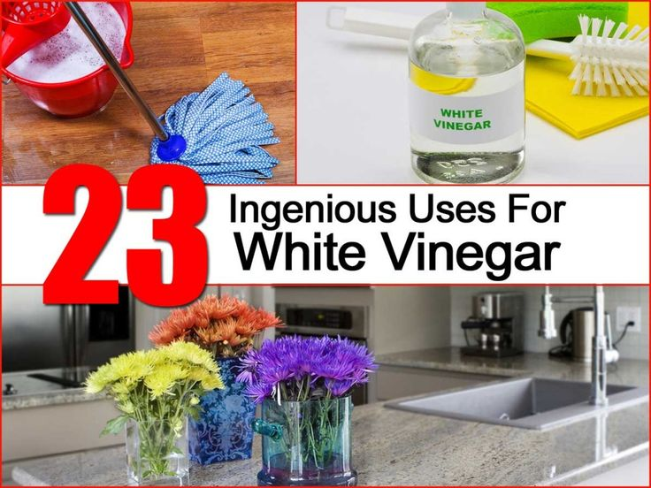 White Vinegar uses - deodorizer and disinfectant - poached / boiled eggs - wilted veggies - onion hand remover - gas x - mic - dishes - fruit flies - stemware - stemware - grout - scuffed DVDs - water rings - static - mildew - fabric softer -  gum - adhesive - frost - weeds - pets dogs cats ears - skunk - sofa  couch cushions shower curtain