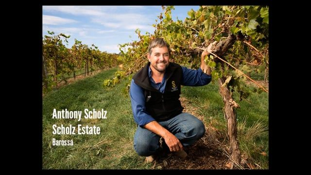 Environmental Champions of the Barossa: Anthony Scholz