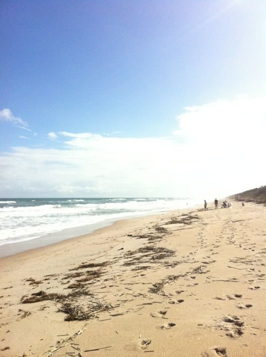 miami beach memorial day video