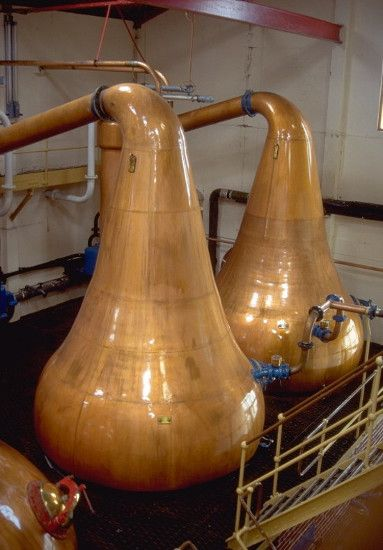 Short copper pot stills at Lagavulin: the size and shape of the upper parts of pot stills, as well as how much the stills are filled, affect whiskies.