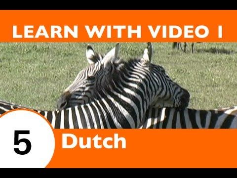 Learn Dutch with Video - How to Talk About Safari Animals in Dutch - YouTube
