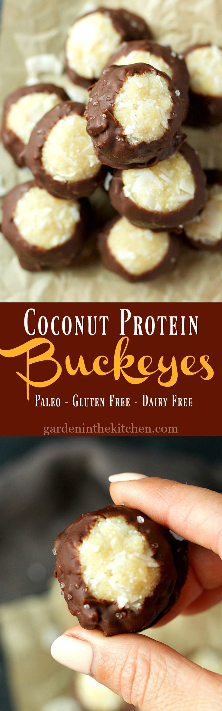 Coconut Protein Buckeyes (Paleo, Gluten-free, Dairy-free) | Garden in the Kitchen