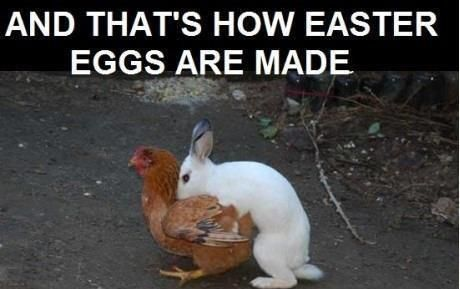 Image result for Easter funny