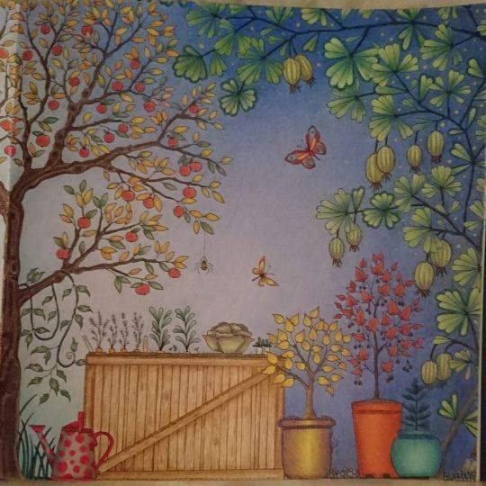 Adult Coloring Books Colouring Pencil Art Secret Gardens Johanna Basford Garden Embroidery Motifs Pictures Colored Pencils