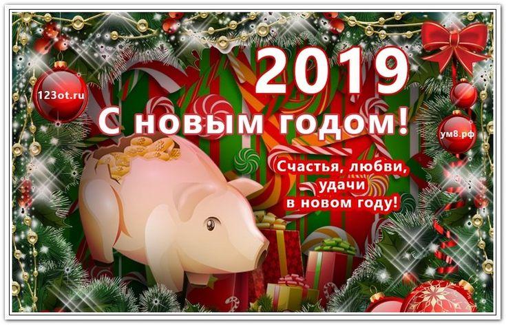 Поздравления с картинками с новым годом 2019 свиньи