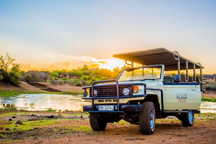 Why should you book a stay at a private game reserve? Click here to see the answer! https://www.travelground.com/blog/private-game-reserve-getaways