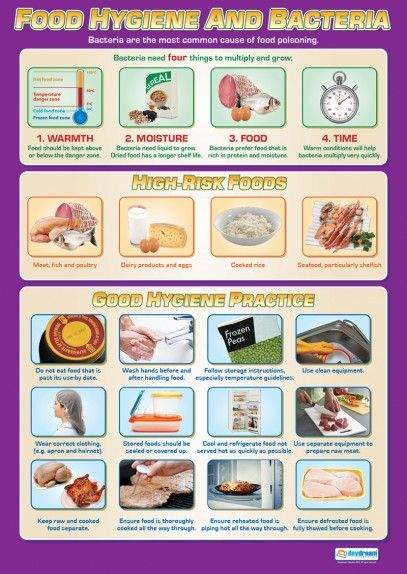 Food Hygiene and Bacteria | Design Technology Educational Posters