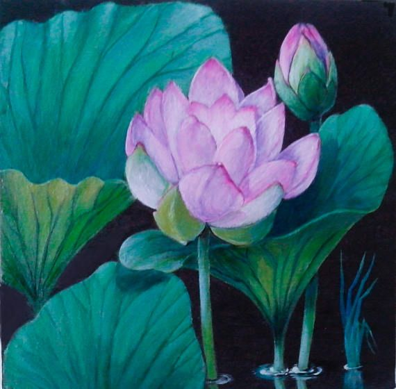 Самобытное искусство живопись, акриловые краски, цветы, краски, -Lotus, подарок, любовь, медитация, настоящий, свадебный подарок, символ чистоты