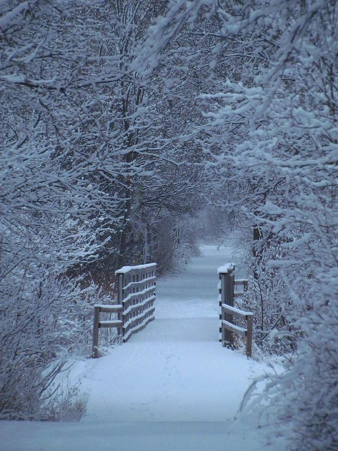invierno: