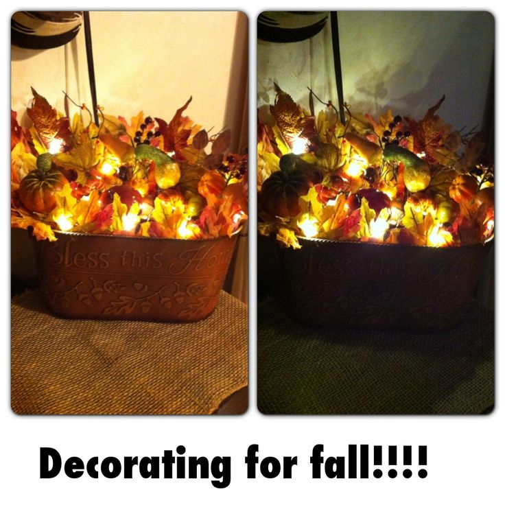 Fall decor! I love fall