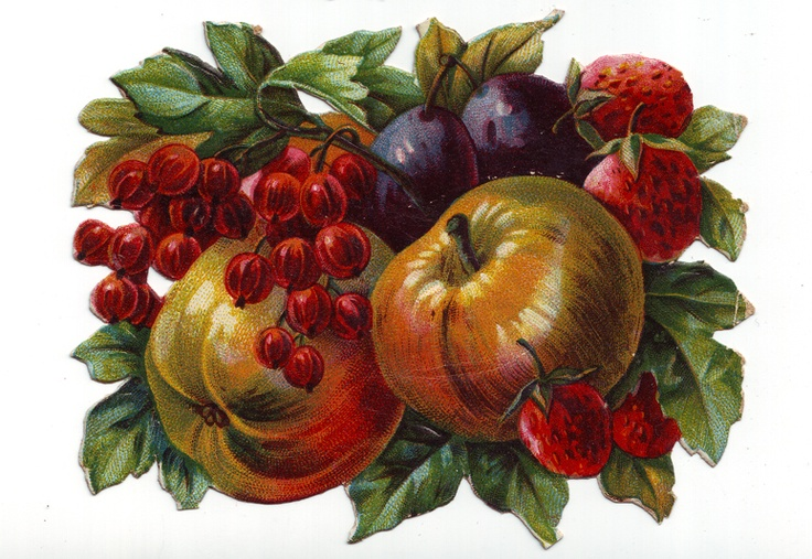 Vintage Victorian Era Summer Fruits die cut scrap 1800s antique scrapbooking