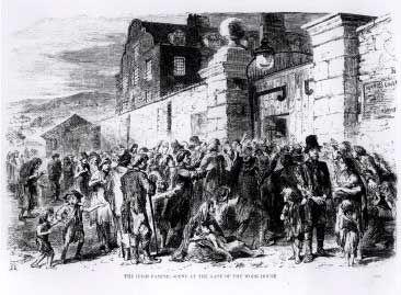 Irish Genocide