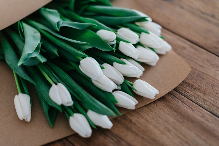 #flower #spring #tulip #bunch