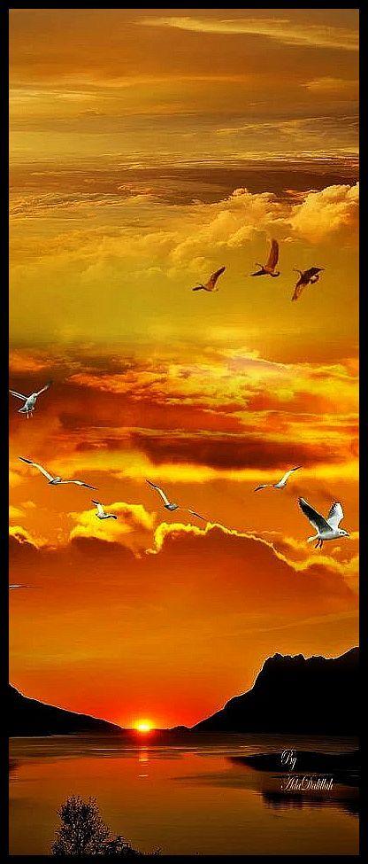 amazing sunset shot #by Tivadarné Csereklyei #landscape sun sky clouds birds yellow orange red reflection nature sunrise