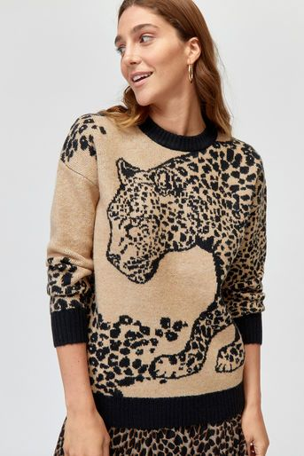 bf9e8f75289f Leopard placement cosy jumper | LEOPARD PRINT | Cosy outfit, Jumper ...