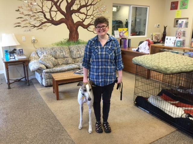 Eight Ball with his new mom, Molly.  Congratulations to this new #fureverfamily! #adoptaretiredracer #gpi #greyhound #greyhoundpetsinc #greyhoundsmakegreatpets